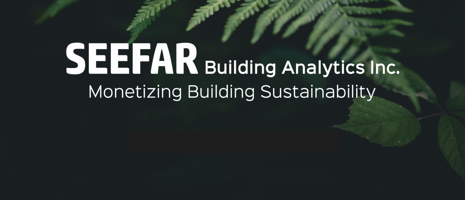 SEEFAR Building Analytics Inc.